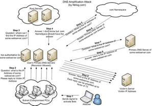 Dns by Anonymous Dns Amplification Attacks For Operation Global