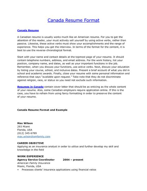 resume in usa ideas sle resume for programmer 28 images