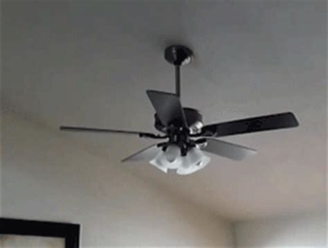 top ten reasons you need a new ceiling fan fanimation
