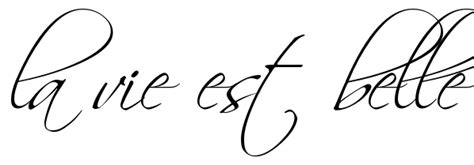 quot la vie est belle quot tattoo quote download free scetch