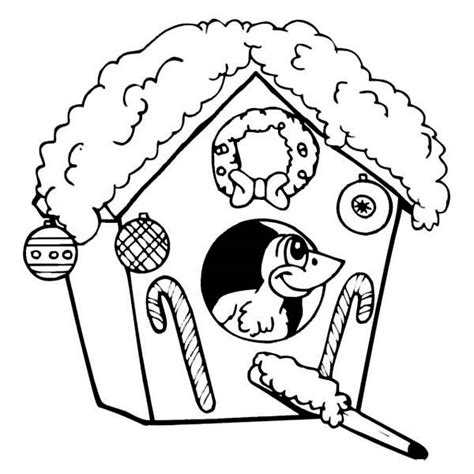 coloring pages birds in winter winter bird coloring pages archives kids coloring page