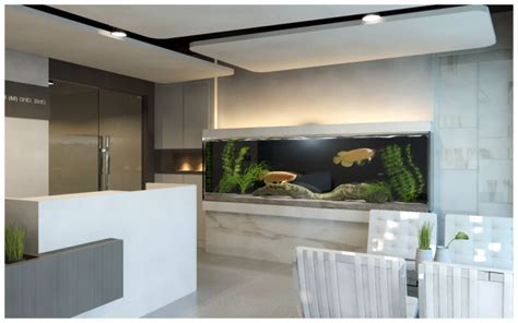 aquarium design for arowana office design contemporty 2010 by chih hung bong at