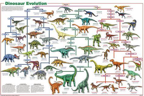 printable dinosaur poster dinosaur evolution poster