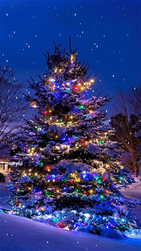 merry christmas tree wallpaper 20 cool gifs to get you in the spirit pretty trees tree
