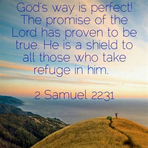 his lordship s true 2 samuel 22 31 nkjv yes all of god s promises are yes