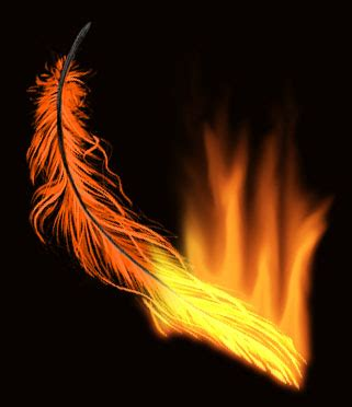 phoenix feather by darkphoenixfri13 on deviantart