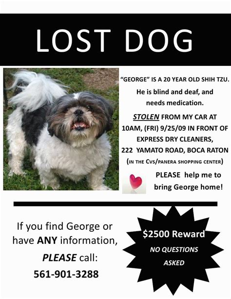 design a poster on your missing pet lost dog alert reward for the love of the dog