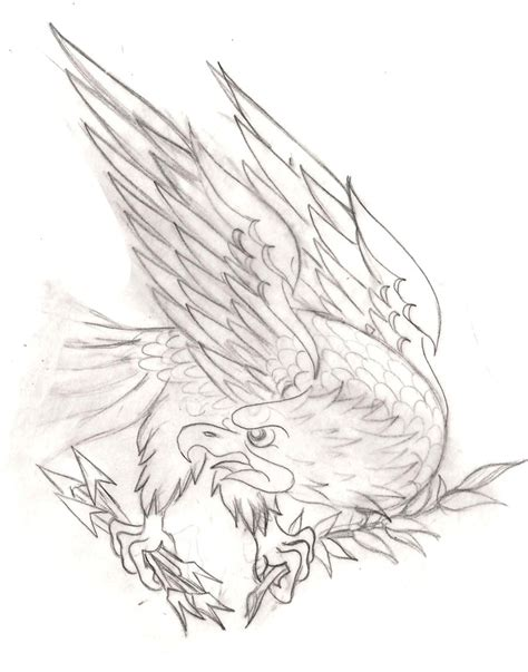 tattoo eagle drawing american traditional eagle sketch tattoo pinterest