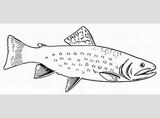 Cooked Fish Coloring Pages