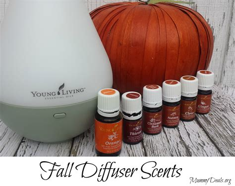 fall scents 6 fall diffuser scents mummy deal