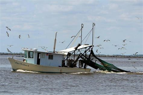 shrimp boat on beach shrimp boats are coming picture of tybee island beach