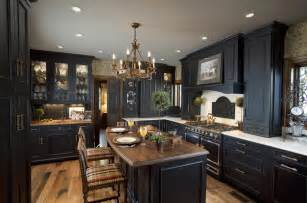 kitchen ideas with black cabinets black kitchen design kitchen cabinets