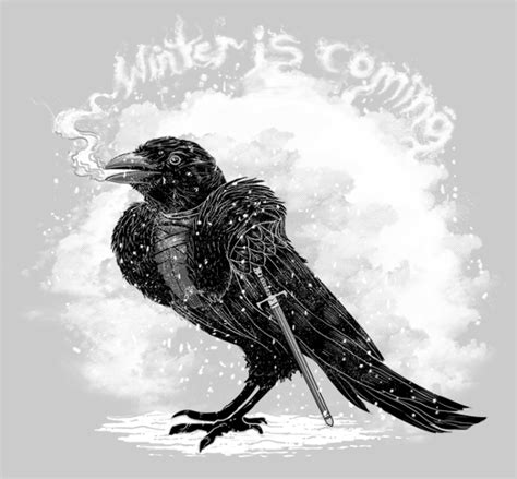 top 28 where do crows go in winter winter crow