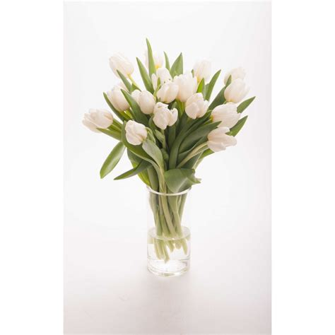 white tulip bouquet tulip bouquets gifts flower muse