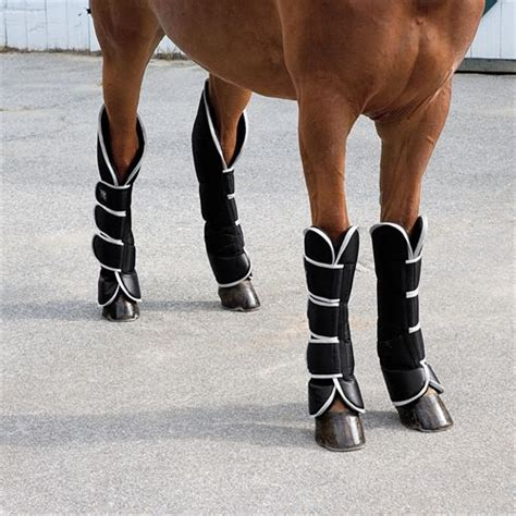 shoes for horseback woof shipping boots dover saddlery