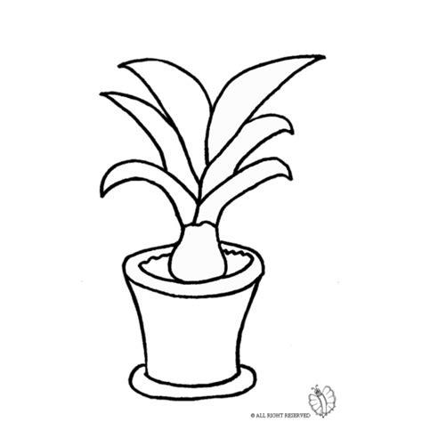 disegni di vasi disegno di pianta nel vaso da colorare per bambini