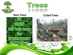 Plant Trees Save Environment Essay by Essay On Save Trees Save Nature
