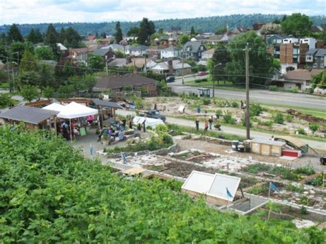 america s first food forest from ground level to canopy