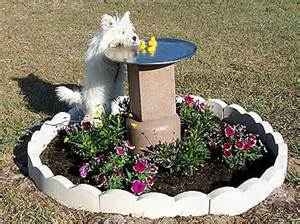 Tlc Pet Cottage by Pets With Tlc Mermaid Cottages On Tybee Island Ga