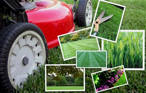 contact us tender care lawn service