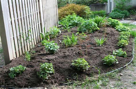 low maintenance flower beds weed water mulch a low maintenance perennial garden