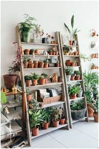 indoor plant shelves plant shelf ideas for adding nature atmosphere in your