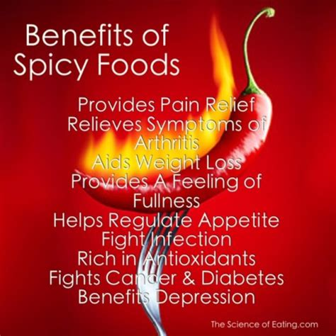 can dogs eat spicy food benefits of spicy foods
