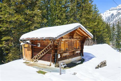 traditional alpine house stock photo image of blooming small wooden traditional alpine cabin stock photo image