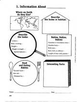 printable animal research template animal research and writing printable 3rd 6th grade