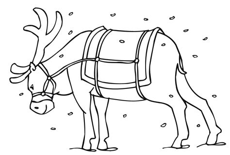 Free Coloring Pages Of Reindeer Printable Coloring Pages Reindeer