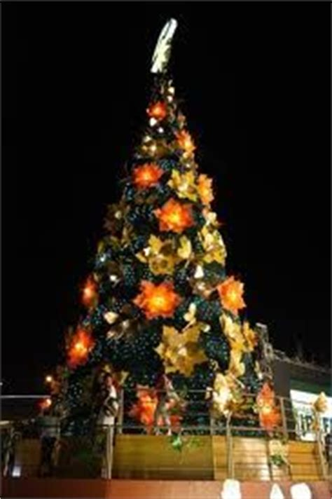 christmas tree in tagalog 1000 images about in the philippines on philippines and