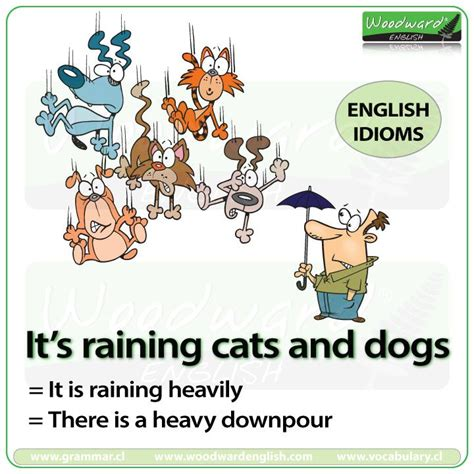17 best images about idioms and slang on