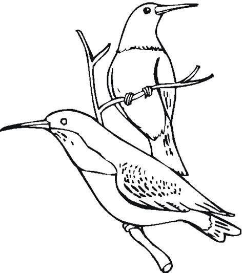 hawaiian birds coloring pages coloring page hawaiian cake ideas and designs