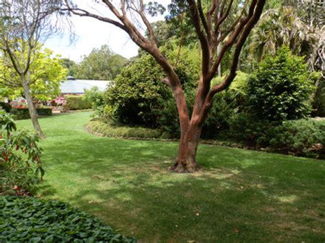 Geelong Botanic Gardens Special Events Spaces City Of Botanical Gardens Geelong