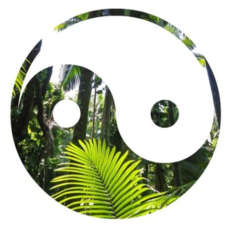themes tumblr tropical wild