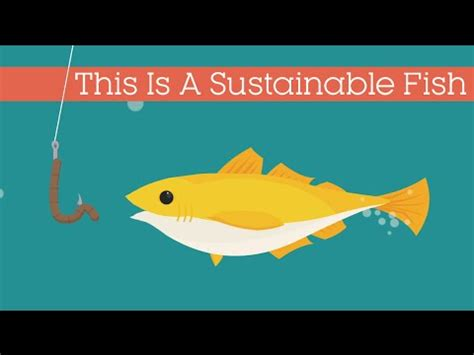 technology is like a fish the longer it stays on the shelf the picture quotes this is a sustainable fish