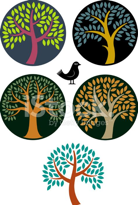 trees symbolism circular tree symbols stock photos freeimages