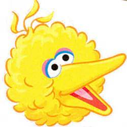 big bird template free coloring pages of big bird template