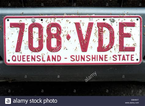 Car Licence Types Qld by Check Vehicle License Plate Number Singaporenewsn7