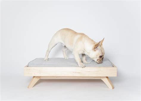 modern dog beds modern dog beds from pup kit dog milk