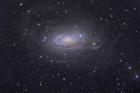 sunflower galaxy apod 2008 april 17 messier 63 the sunflower galaxy