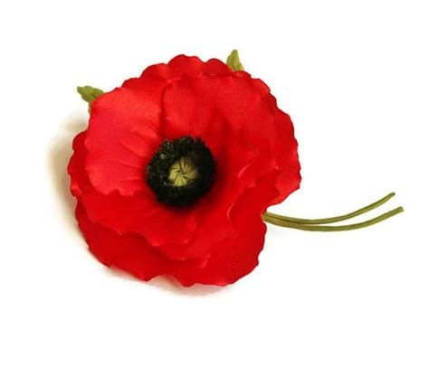 real poppies clipart best