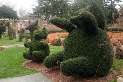 17 best images about awesome gardens on pinterest