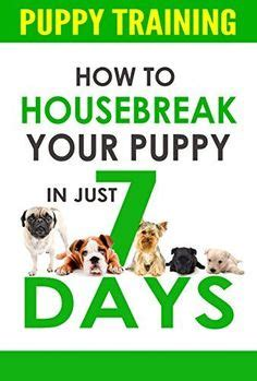 potty a puppy in 7 days a puppy teachers pet and potty on