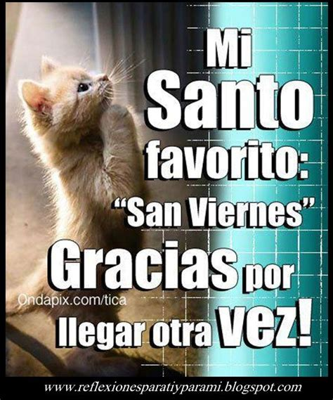 imagenes locas viernes el santo favorito good morning pinterest