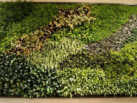 imagenes muros verdes muros verdes canc 250 n en canc 250 n tel 233 fono y m 225 s info