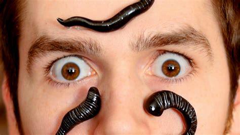 leech facial treatment leeches hirudinea