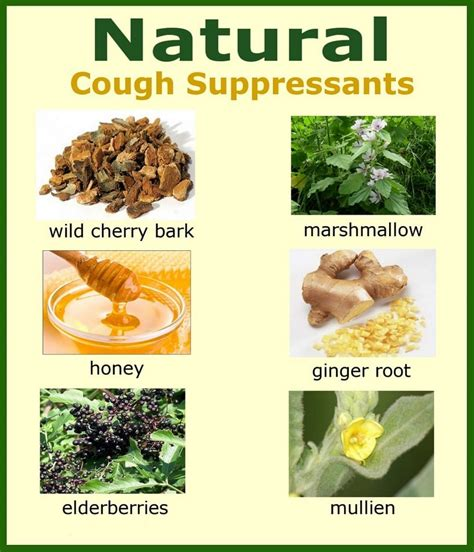 home remedies for cough cough home remedies best conservative treatments