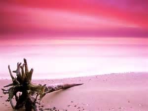 beaches with pink sand pink beach komodo island