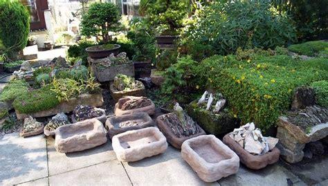 scottish rock garden society scottish rock garden society scottish rock garden club